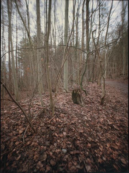 http://rownakbose.ch/files/gimgs/58_20150112-wald-unterholzweg-a.jpg