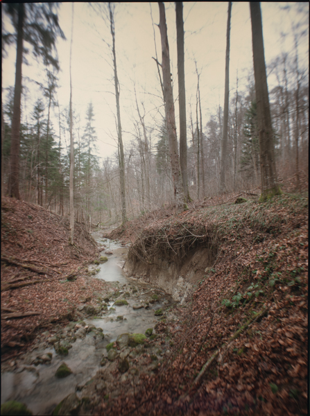 http://rownakbose.ch/files/gimgs/58_20150329-wald-adlisbergbachweg-b.jpg