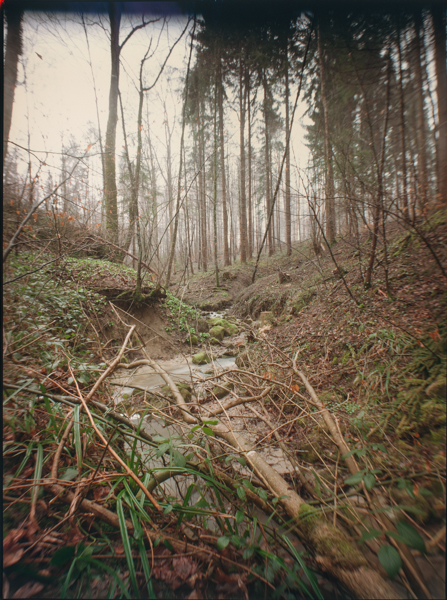 http://rownakbose.ch/files/gimgs/58_20150403-wald-adlisbergbachweg-a.jpg