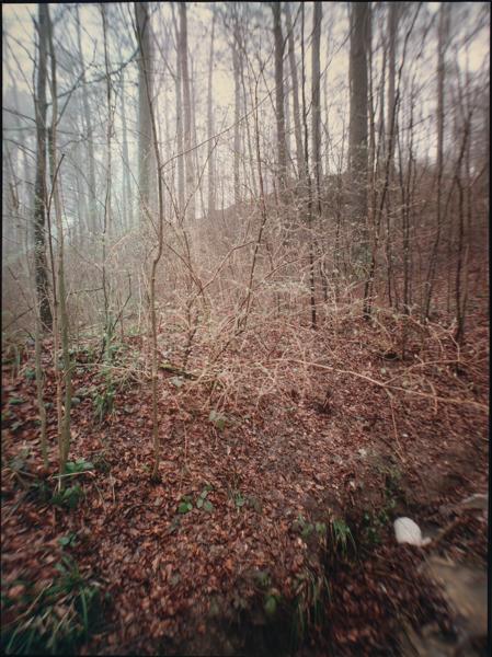 http://rownakbose.ch/files/gimgs/58_20150403-wald-adlisbergbachweg-b.jpg