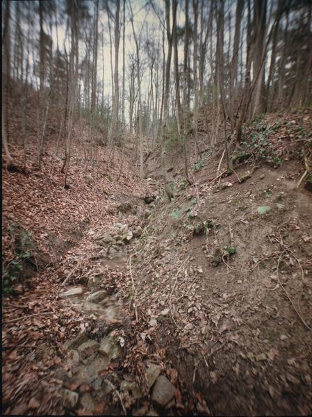https://rownakbose.ch/files/gimgs/th-58_58_20150329-wald-adlisbergbachweg-a.jpg